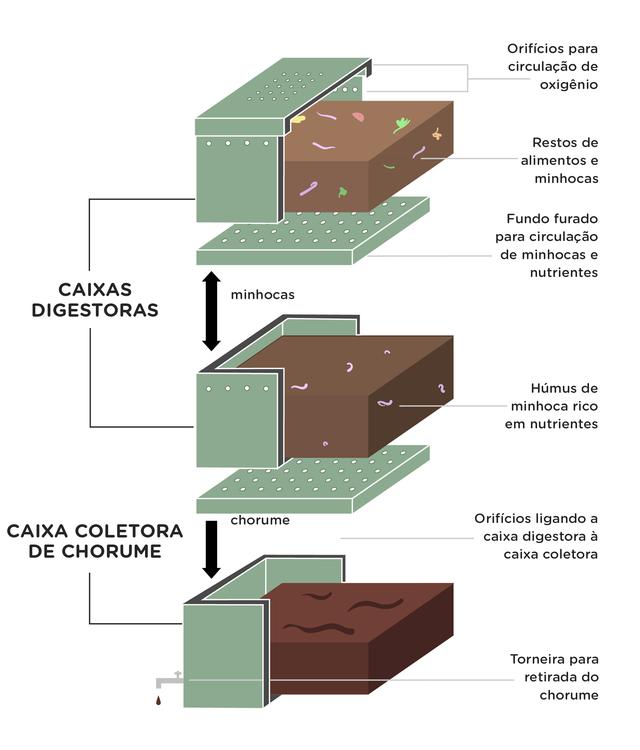 Infográfico compostagem. Rodolfo Almeida/Nexo Jornal