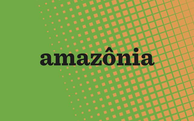 Amazônia na mira: história, desmatamento e geopolítica