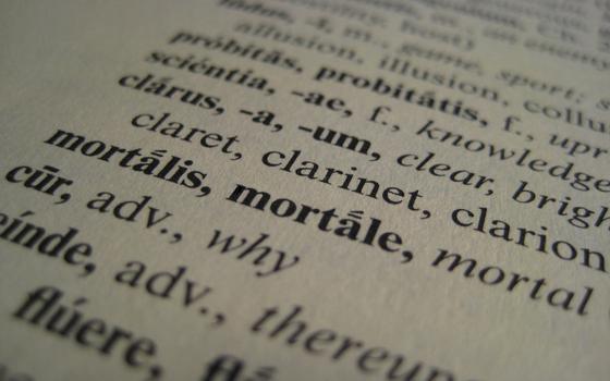 'Verba volant, scripta manent': por que ainda se estuda latim no mundo moderno
