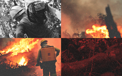A devastação contínua do meio ambiente e a pressão por mudanças