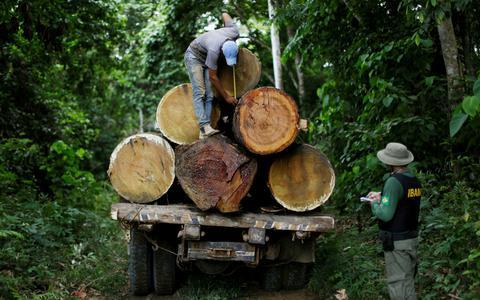 Como governos anteriores controlaram o desmate na Amazônia