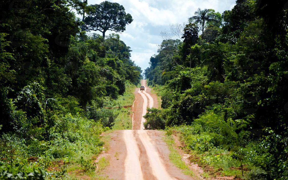 Imagem de estrada cortando a Amazônia em Colniza, no Mato Grosso