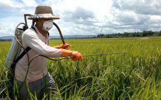 Aplicação de agrotóxicos em lavoura