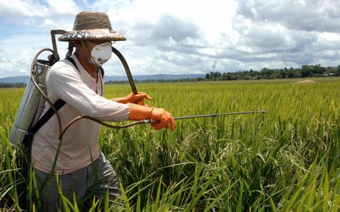 Agrotóxico: de salvador da lavoura a aliado incômodo