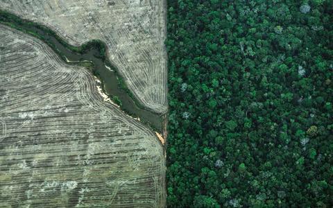 A mudança climática e as duas Amazônias
