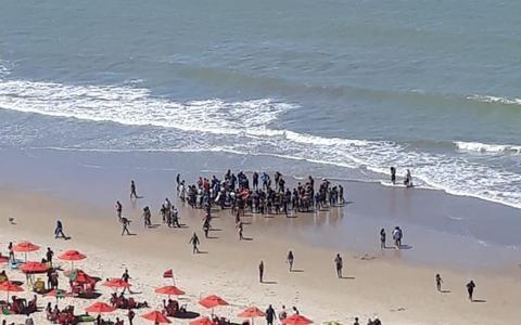 Homem é atacado por tubarão no litoral de Pernambuco