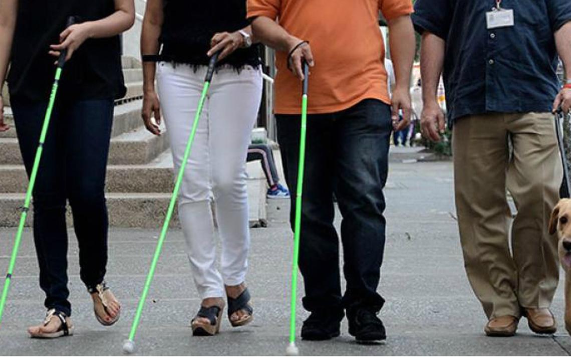 Bengala verde serve também como objeto de identidade à população de baixa visão