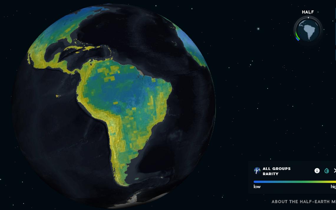 Mapa mostra áreas com alta biodiversidade no mundo