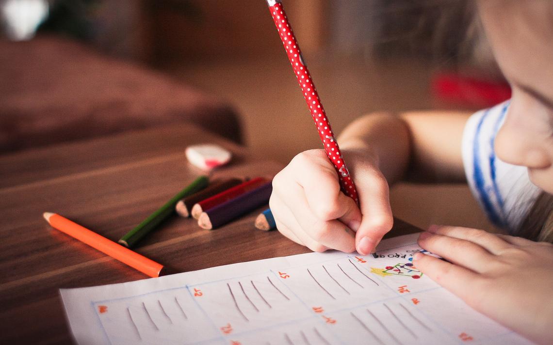 Bolsonaro assinou PL que pretende regulamentar a educação domiciliar