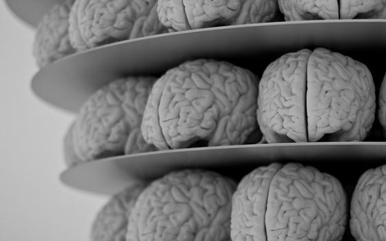 Ninguém 'armazena memórias'. Afinal, nosso cérebro não é um computador