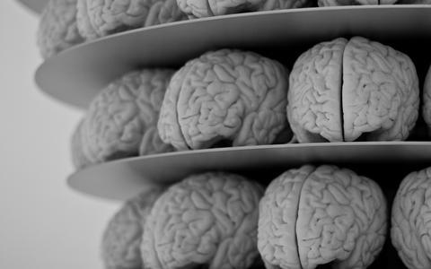 Por que a consciência não é o 'fantasma na máquina'