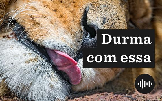 IR: da origem do Leão à manobra que faz você pagar mais