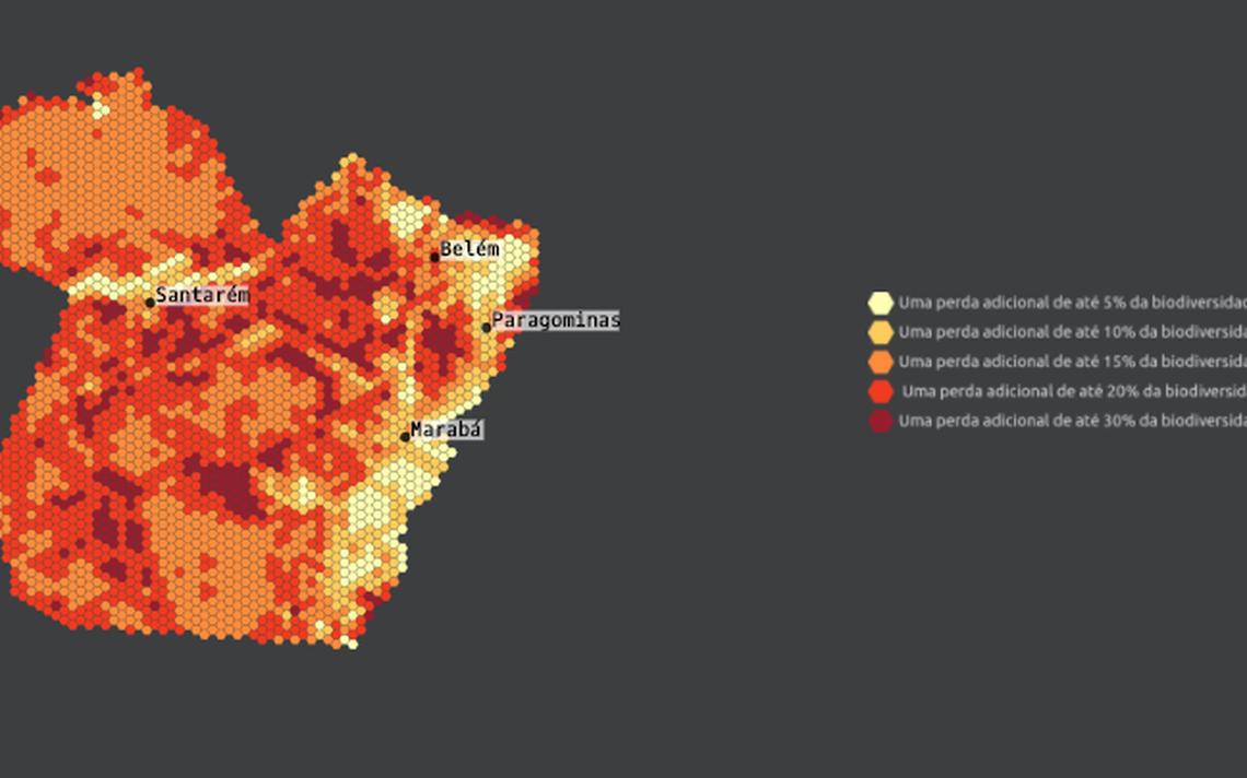 Mapa da Floresta Silenciosa, que indica a degradação