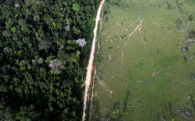 Área desmatada na região amazônica de Itaituba, no Pará
