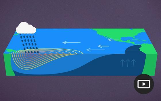 O que é o fenômeno El Niño. E como ele afeta a vida na Terra