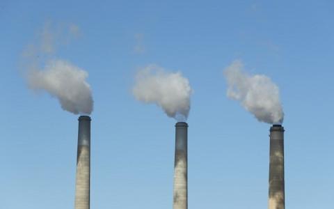 Crédito de carbono: a aposta de mercado contra o efeito estufa