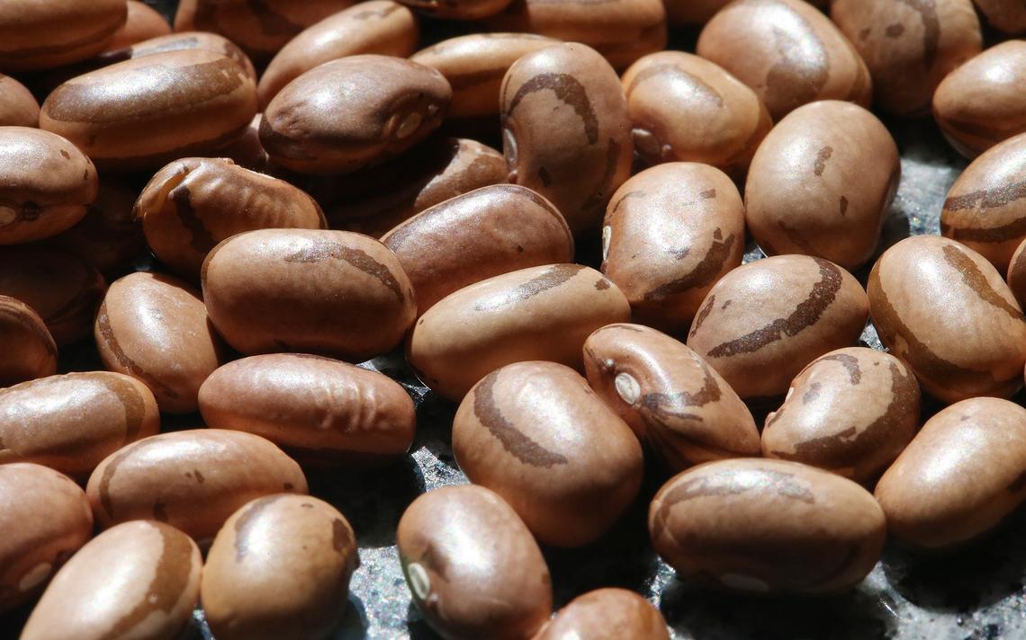 Feijão é um dos itens que mais subiu na cesta básica
