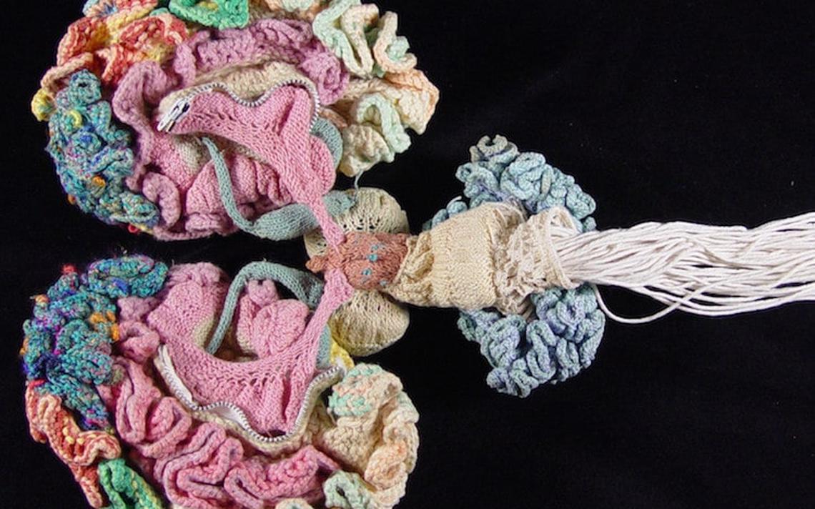 Cérebro de crochê elaborado por Karen Norberg