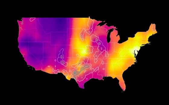 O mapa que segue a migração de aves em tempo real