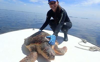 Mariana Fuentes, bióloga em Crystal River, na Flórida