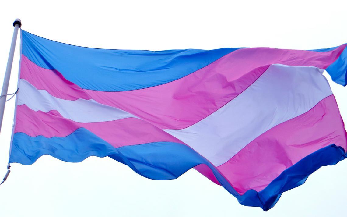 Movimento celebra o Dia da Visibilidade Trans no dia 29 de janeiro
