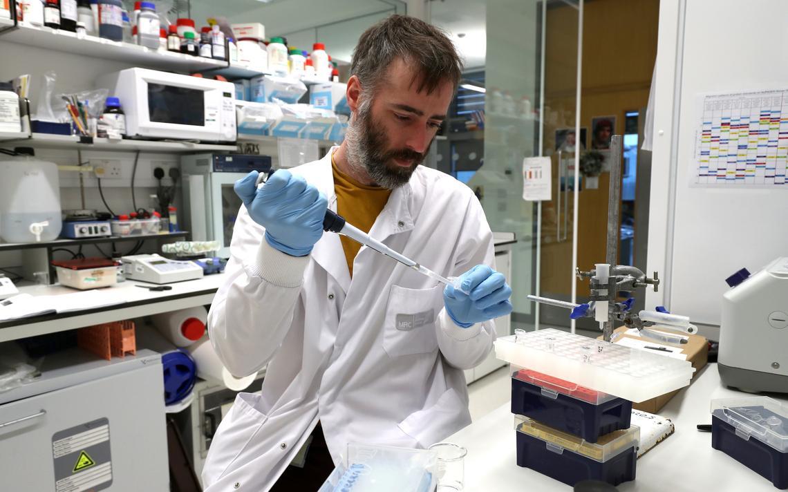 O pesquisador Chris Millington trabalha no Laboratório de Biologia Molecular em Cambridge, na Grã bretanha