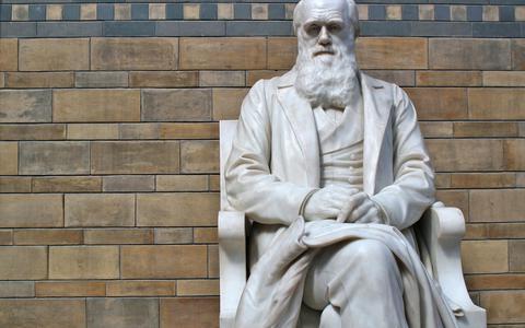 O sentido da vida, segundo esse existencialista darwinista