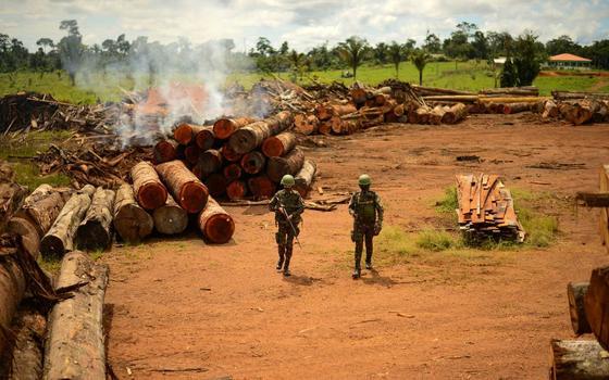 Qual o saldo da operação das Forças Armadas na Amazônia