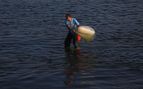 A prática comercial que ameaça espécies marinhas de extinção