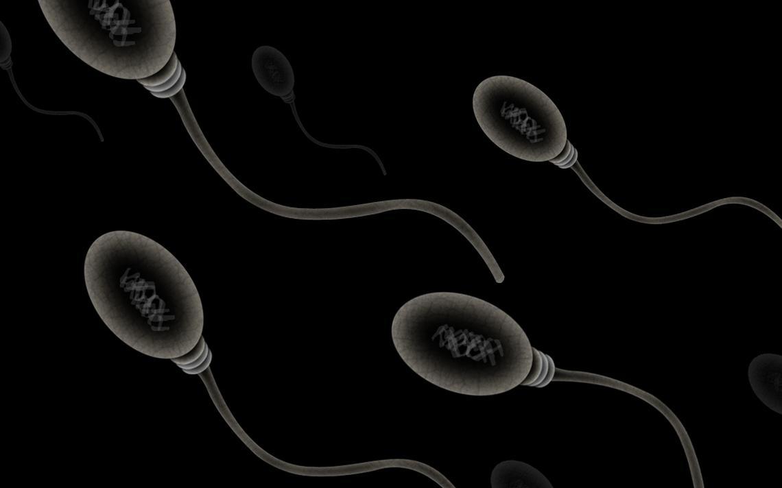 Representação de espermatozoides