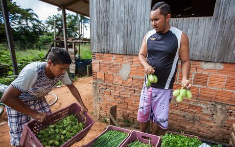 Qual é a situação da fome nos países da América do Sul