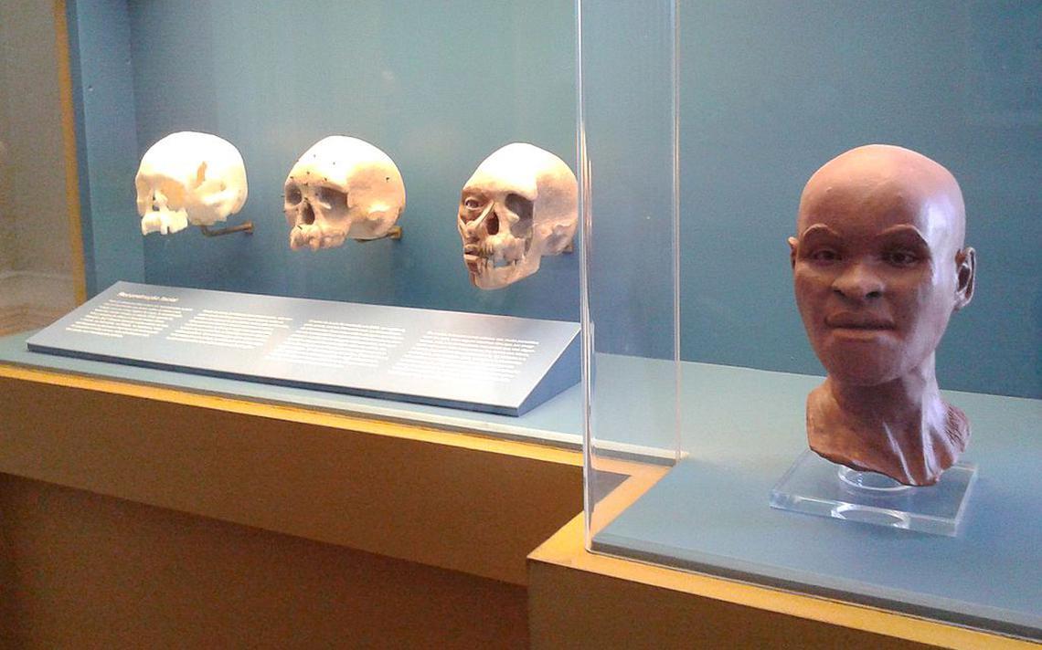 Reconstituição do rosto de Luzia, em foto de 2015 no Museu Nacional