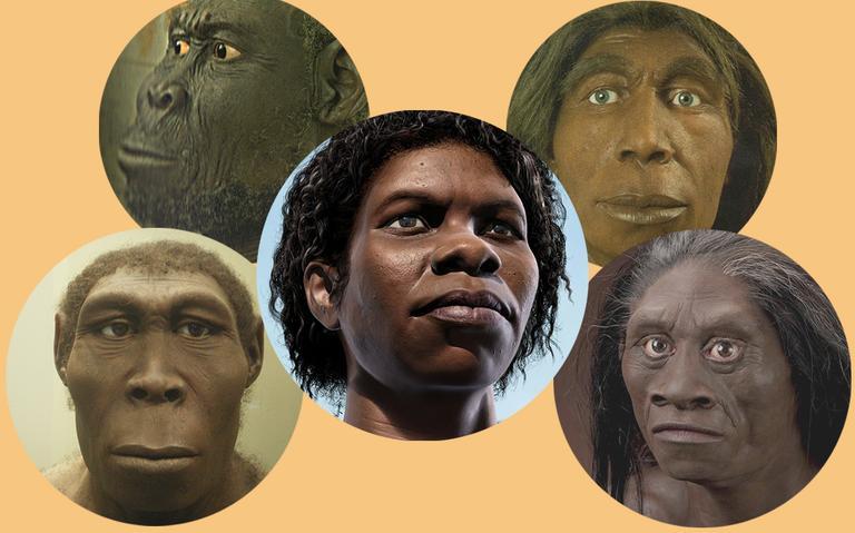 Resultado de imagem para Como os Homo sapiens se espalharam pelo mundo