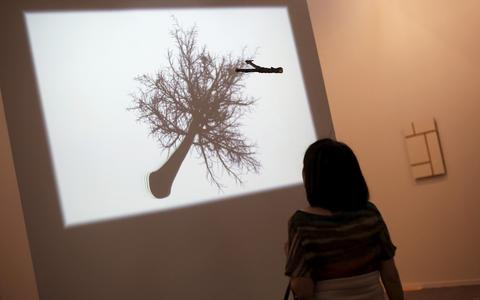 Qual é o papel da curadoria no contexto da arte contemporânea