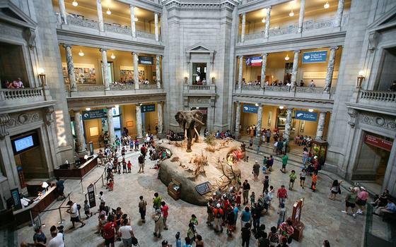 Saguão de museu visto de cima, cheio de visitantes e com um animal empalhado no meio