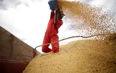 Qual o quadro da regulação do mercado de alimentos