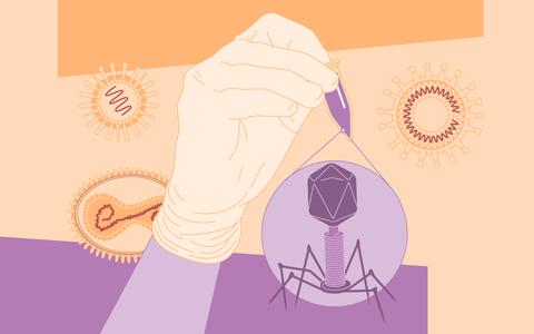 A história ilustrada de um saber: virologia