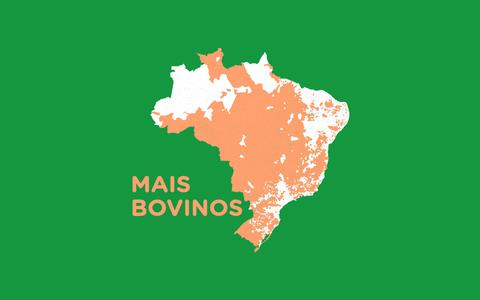 Quais cidades brasileiras têm mais gado do que humanos