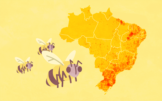 A produção de mel no Brasil e no mundo