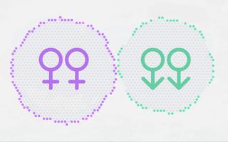 Ilustração com círculos demostrando a proporção de uniões civis entre pessoas do mesmo sexo