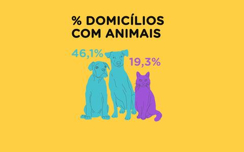 A preferência dos brasileiros por gatos e cachorros