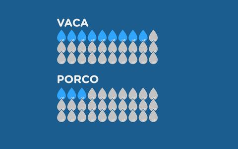 O gasto de água pela pecuária no Brasil e no mundo