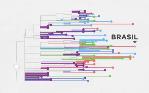 Como é a 'árvore genealógica' do novo coronavírus