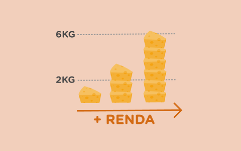 O consumo de queijos no Brasil, por estado e renda