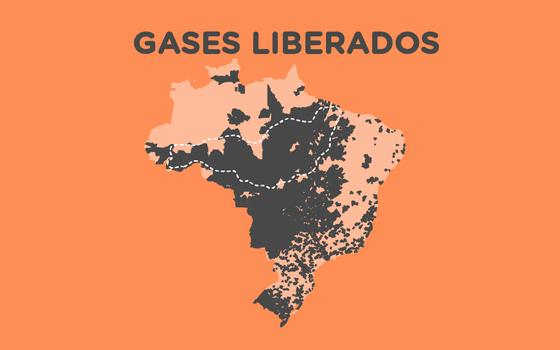 O saldo de gases de efeito estufa nos municípios brasileiros