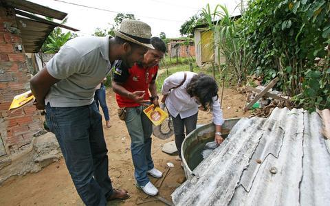 Qual é a responsabilidade do poder público no combate à dengue e ao zika