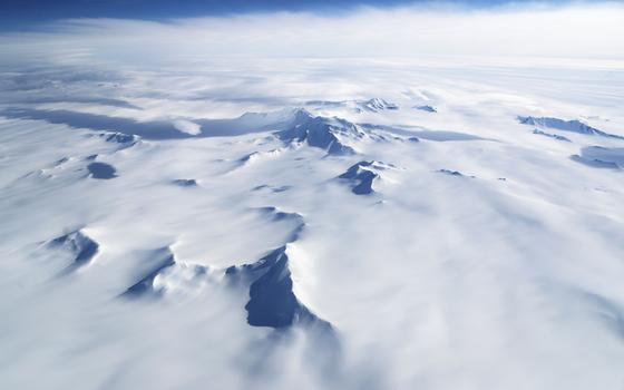 Os animais recém-descobertos na Antártida