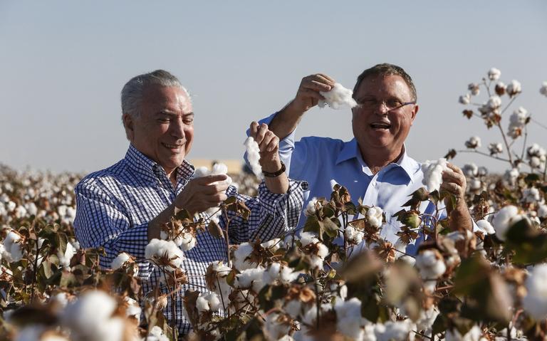Temer e Maggi abrem colheita de algodão em Mato Grosso