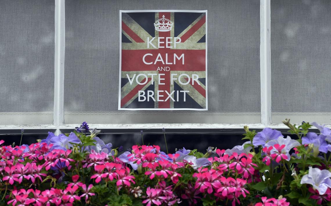 Apoio à saída britância da União Europeia