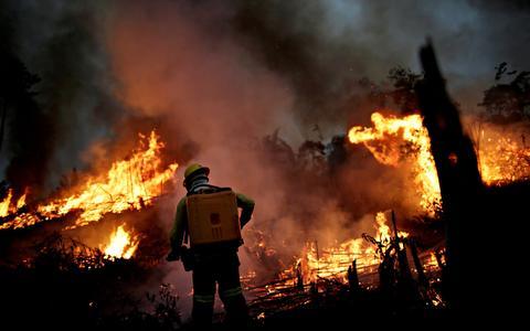 Qual a melhor forma de combater incêndios florestais